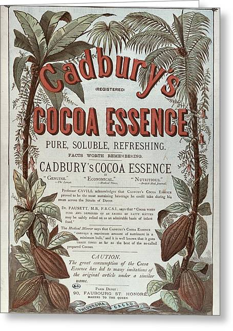 Warm Drawings Greeting Cards - Advertisement for Cadburs Cocoa Essence from the Graphic Greeting Card by English School