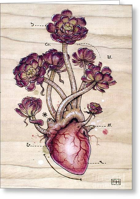 Nature Pyrography Greeting Cards - Aeonium Heart Greeting Card by Fay Helfer