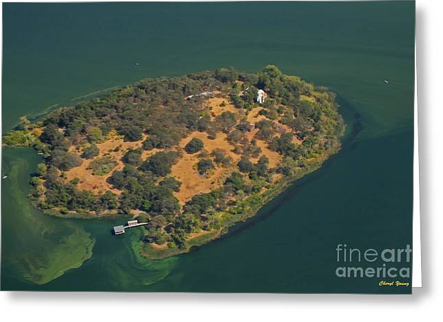 Private Island Greeting Cards - Aerial Anderson Island Greeting Card by Cheryl Young