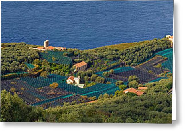 Nature Center Greeting Cards - Aerial View Of A Town, Villa Angelina Greeting Card by Panoramic Images