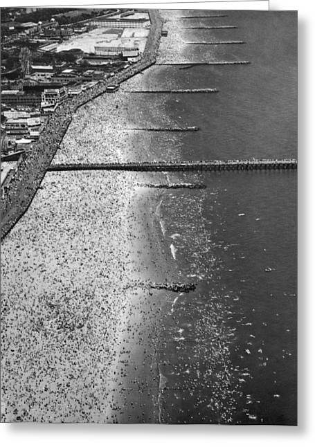 York Beach Greeting Cards - Aerial View Of Coney Island Greeting Card by Underwood Archives
