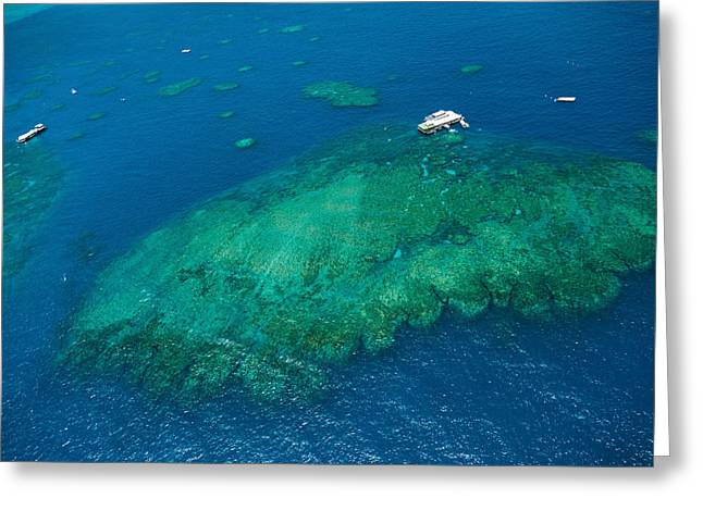 Ocean Photography Greeting Cards - Aerial View Of Coral Reef Greeting Card by Panoramic Images