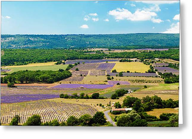 Provence Village Photographs Greeting Cards - Aerial View Of Fields Greeting Card by Panoramic Images