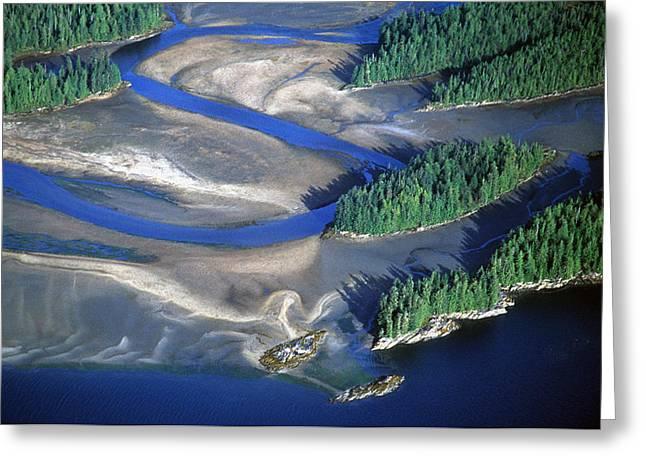 Manzanita Greeting Cards - Aerial View Of Manzanita River Delta At Greeting Card by Chip Porter