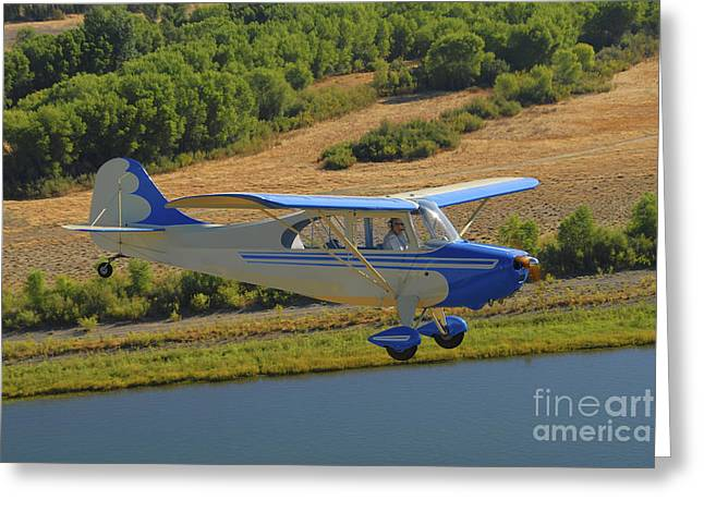 Monoplanes Greeting Cards - Aeronca 7ac Champion Aircraft Flying Greeting Card by Phil Wallick