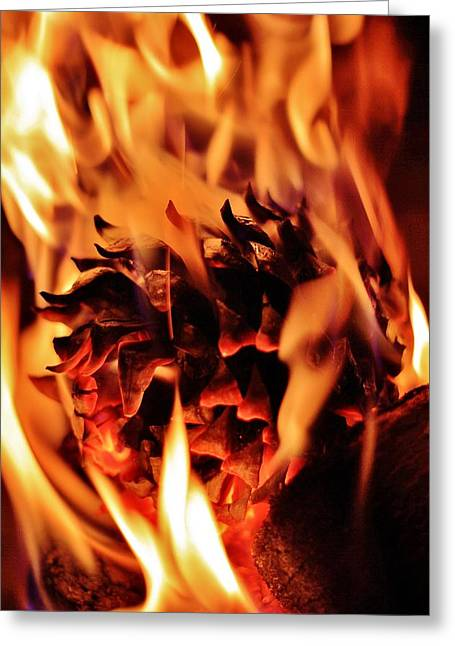 Pine Cones Greeting Cards - Aflame Greeting Card by Benjamin Yeager