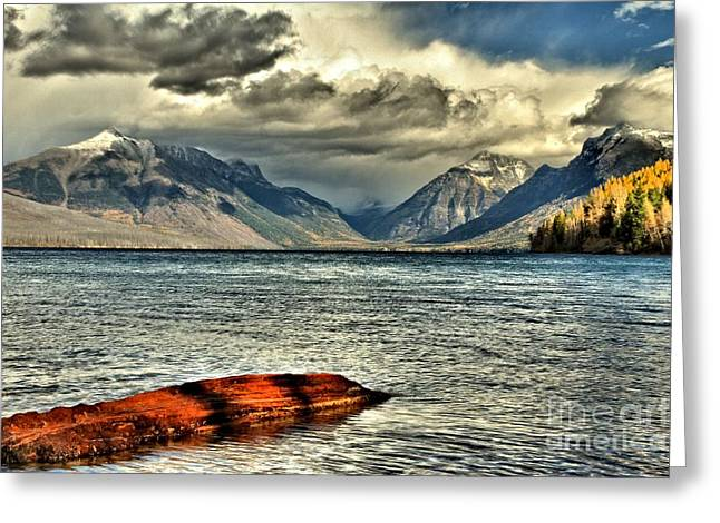 West Glacier Greeting Cards - Afloat Greeting Card by Adam Jewell