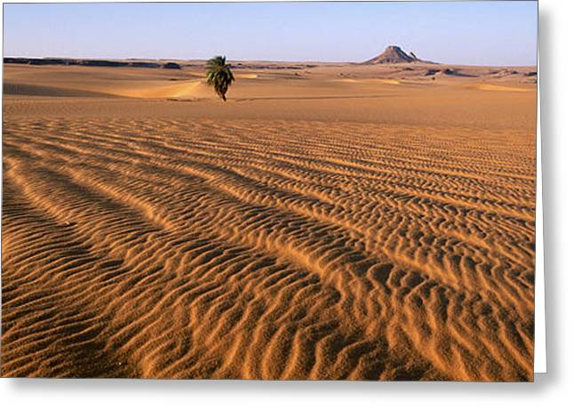 Africa, Chad, Ounianga Serir, Teguedei Greeting Card by Tips Images