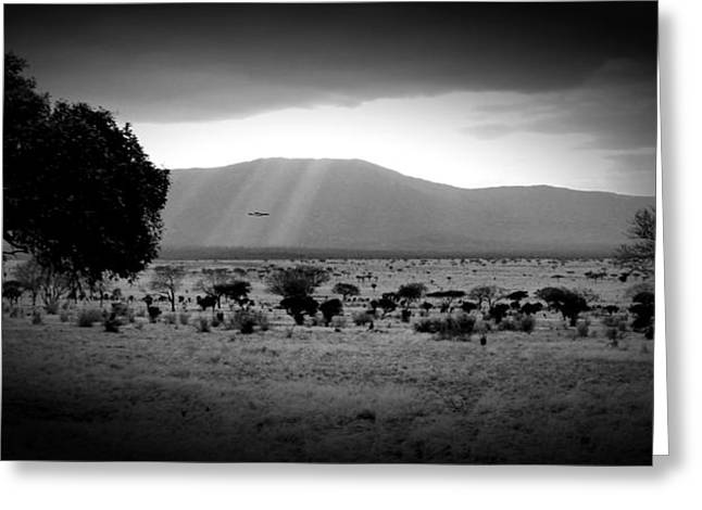 Land Love And Sky Greeting Cards - Africa Greeting Card by Mark Charters