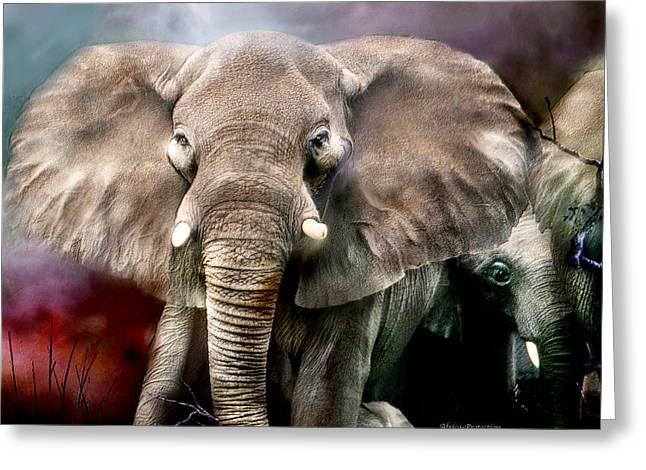 African Greeting Greeting Cards - Africa - Protection Greeting Card by Carol Cavalaris
