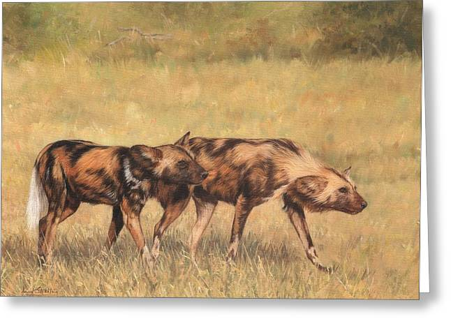 Wild Dogs Greeting Cards - Africa Wild Dogs Greeting Card by David Stribbling