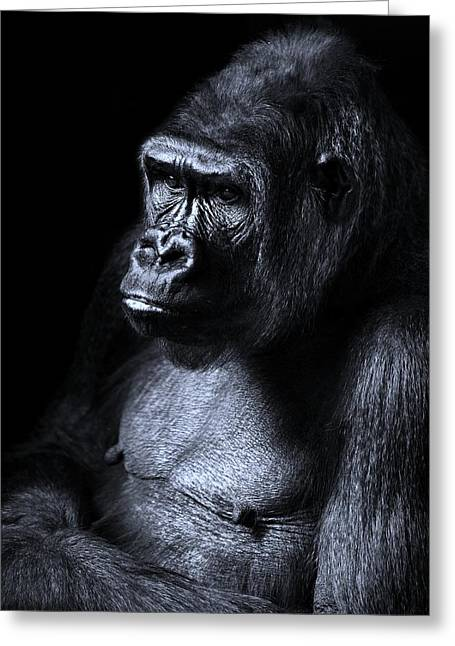 African Gorilla In Deep Thought Greeting Card by Movie Poster Prints