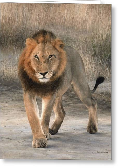 African Lion Art Greeting Cards - African Lion Painting Greeting Card by Rachel Stribbling
