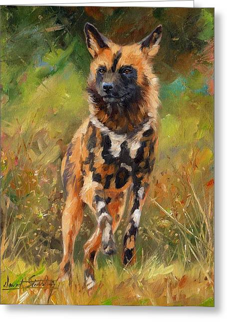 Wild Dog Greeting Cards - African Painted Wild Dog  Greeting Card by David Stribbling
