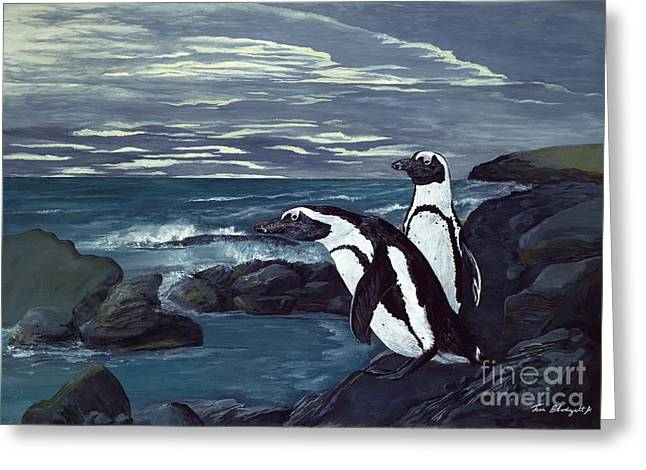 Jackass Greeting Cards - African Penguin Greeting Card by Tom Blodgett Jr