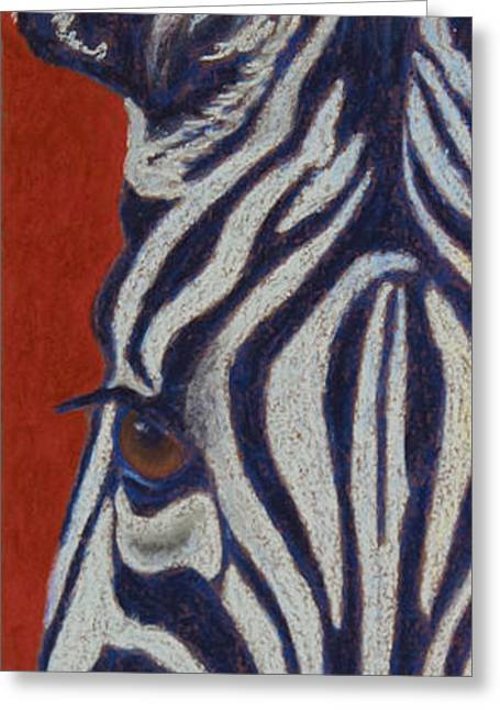 Zebra Colt Greeting Cards - African Stripes Greeting Card by Tracy L Teeter
