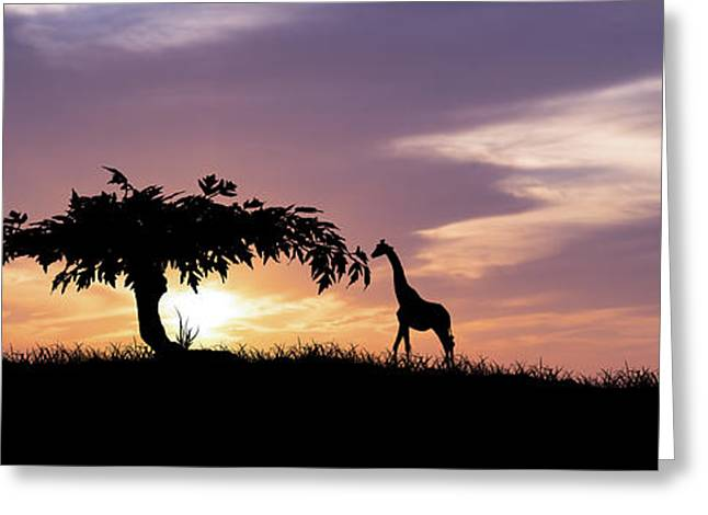 Savanna Greeting Cards - African Sunset Greeting Card by Aged Pixel