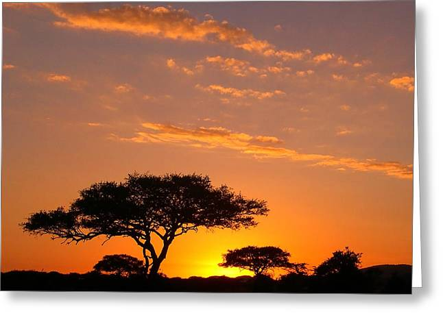 Family Vacation Greeting Cards - African Sunset Greeting Card by Sebastian Musial