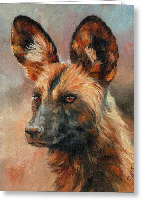 Wild Dogs Greeting Cards - African Wild Dog Greeting Card by David Stribbling