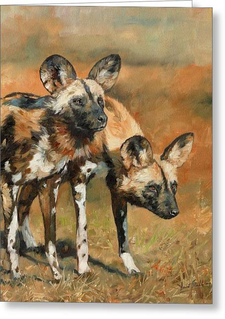 Wild Dog Greeting Cards - African Wild Dogs Greeting Card by David Stribbling
