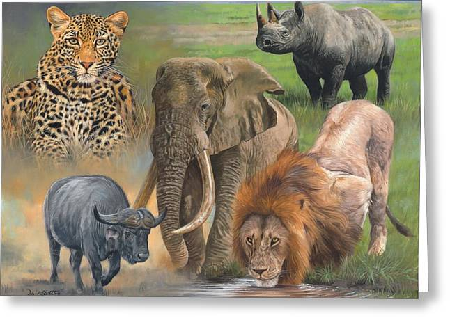 Africa's Big Five Greeting Card by David Stribbling