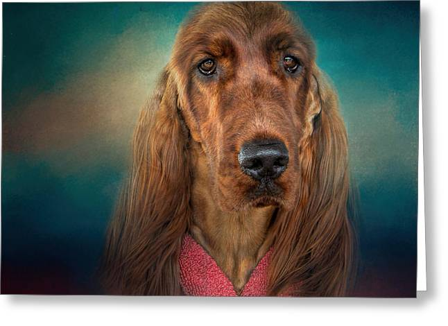 Mahogany Red Greeting Cards - After A Swim - Irish Setter - Dog Art Greeting Card by Jai Johnson