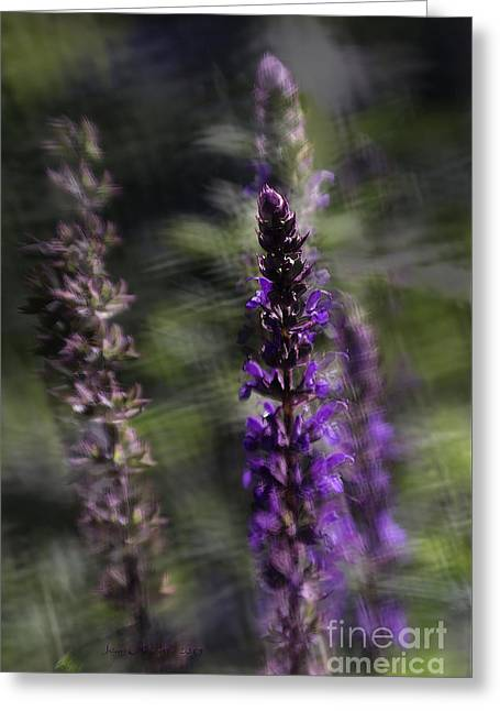 Contemporary_art Greeting Cards - After Me Greeting Card by Jean OKeeffe Macro Abundance Art