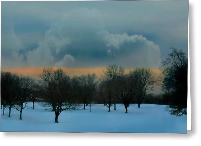 Westchester County Greeting Cards - After the Love Is Gone Greeting Card by Diana Angstadt
