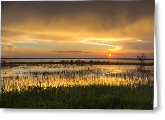 After The Rain Greeting Card by Debra and Dave Vanderlaan