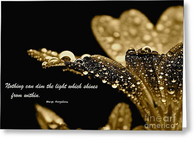 Maya Angelou Greeting Cards - After the Rain - Inspirational Collection Greeting Card by Cindy Nearing