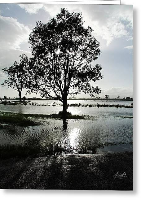 Skyclouds Greeting Cards - After the Rain Greeting Card by Janice OConnor