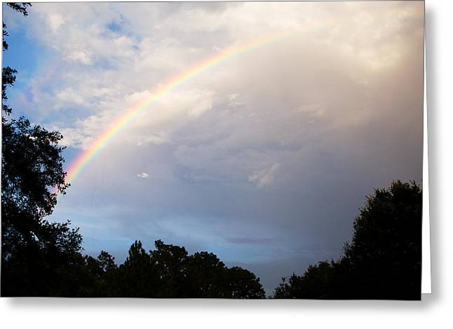 After The Rain Greeting Card by Randi Kuhne