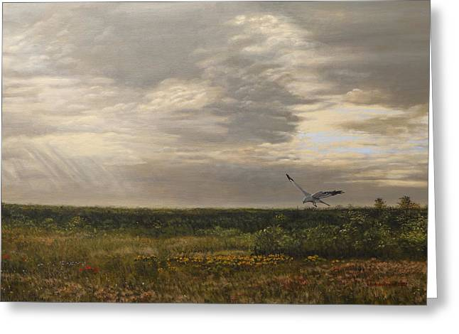 Cumulus Nimbus Greeting Cards - After the Rain the Larks Started Singing Greeting Card by Valentin Katrandzhiev