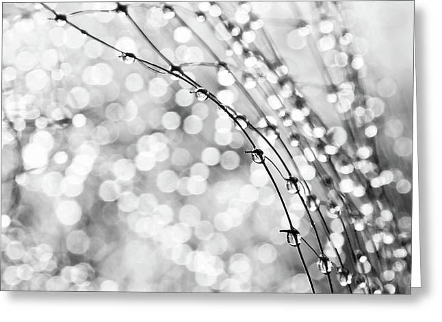 Abstract Rain Greeting Cards - After The Rain Greeting Card by Theresa Tahara