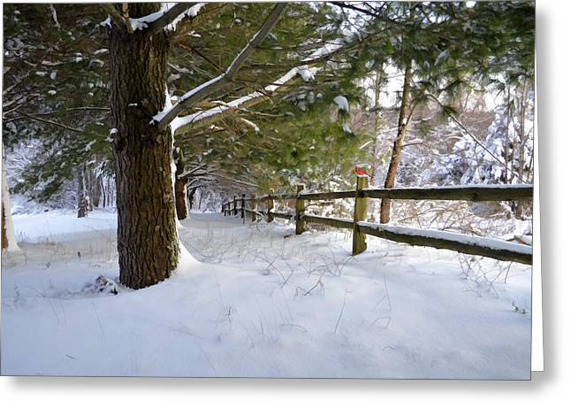 Kathy Jennings Photographs Greeting Cards - After The Snowfall Greeting Card by Kathy Jennings