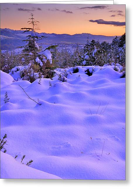 Spain Greeting Cards - After the snowstorm Greeting Card by Guido Montanes Castillo