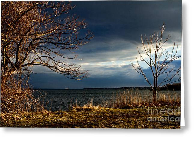 After The Storm  Greeting Card by A New Focus Photography