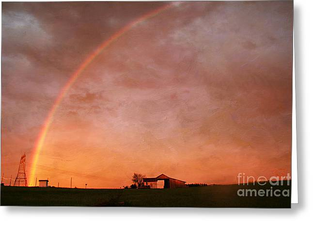 After The Storm Greeting Card by Darren Fisher