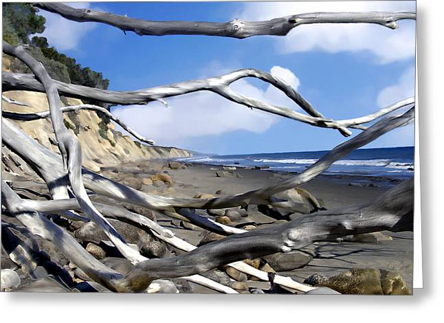 After The Storm Gaviota Greeting Card by Kurt Van Wagner