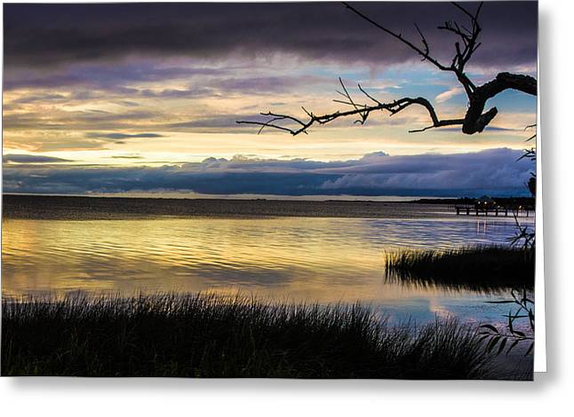North Carolina Greeting Cards - After The Storm Greeting Card by James Chesnick