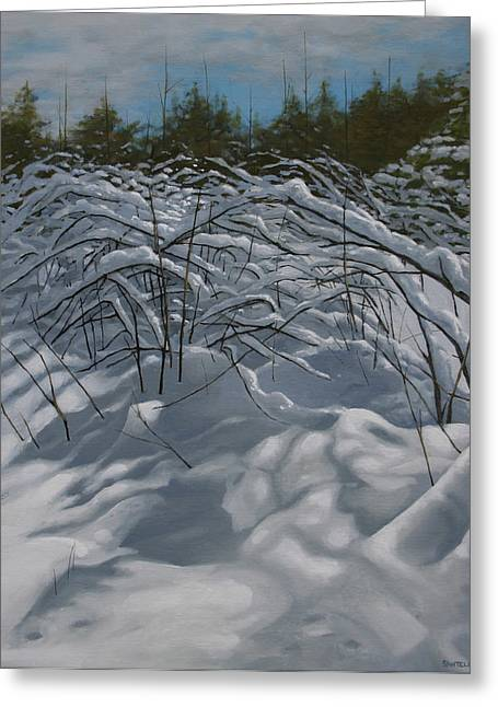Snow Scene Landscape Greeting Cards - After the Storm Greeting Card by Jason Sawtelle