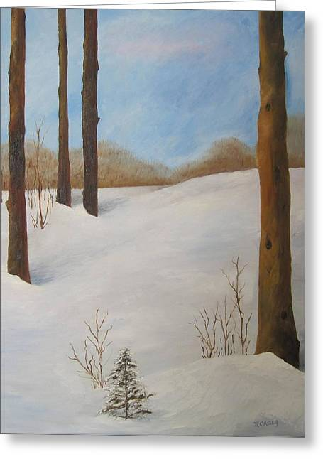 Drifting Snow Paintings Greeting Cards - After The Storm Greeting Card by Nancy Craig