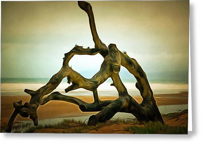 After The Storm Greeting Cards - After The Storm On Oceano Dunes Greeting Card by Barbara Snyder