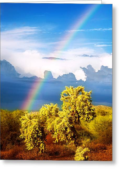 Beautiful Scenery Greeting Cards - After the Storm Greeting Card by Rick Furmanek