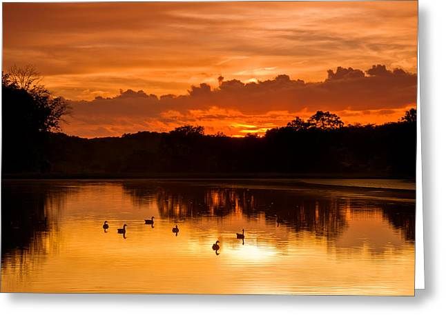 Duck Pond Greeting Cards - After the storm..... Greeting Card by Ulrich Burkhalter