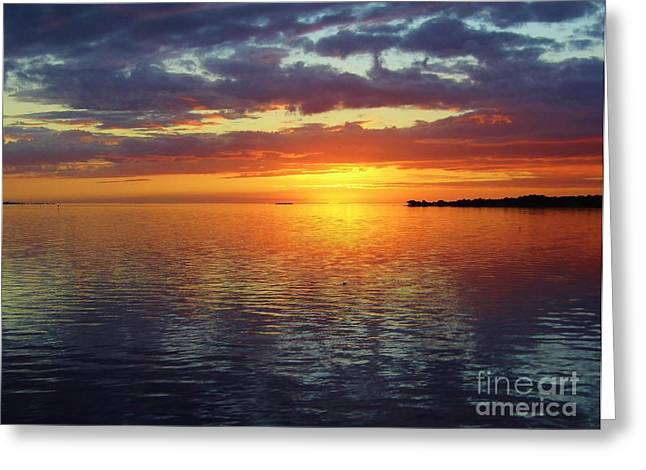 Cedar Key Greeting Cards - After The Sunset Greeting Card by D Hackett