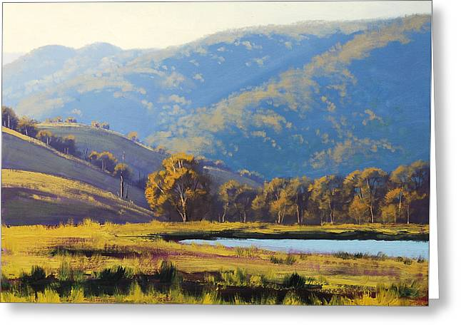 Sheds Greeting Cards - Afternnon Light Lithgow Greeting Card by Graham Gercken