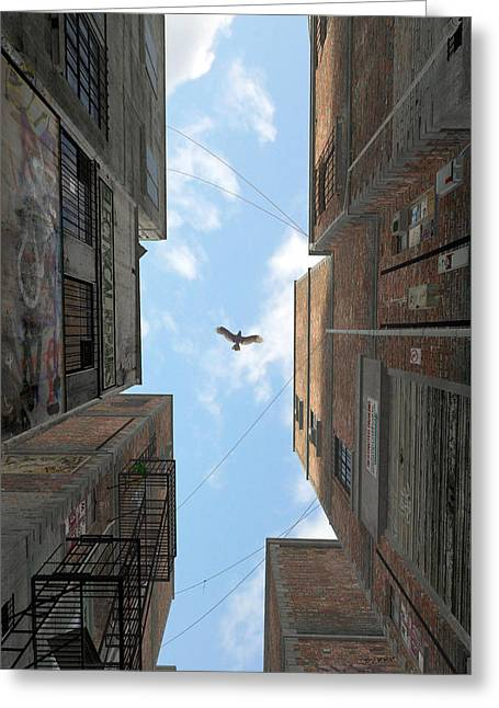 Afternoon Alley Greeting Card by Cynthia Decker