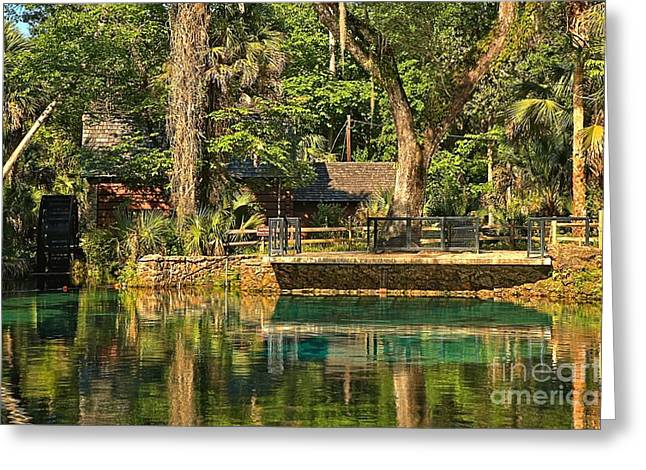 Spring Mill Greeting Cards - Afternoon At Juniper Springs Greeting Card by Adam Jewell