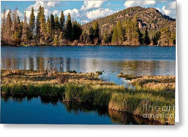 Afternoon At Sprague Lake Greeting Card by Adam Jewell
